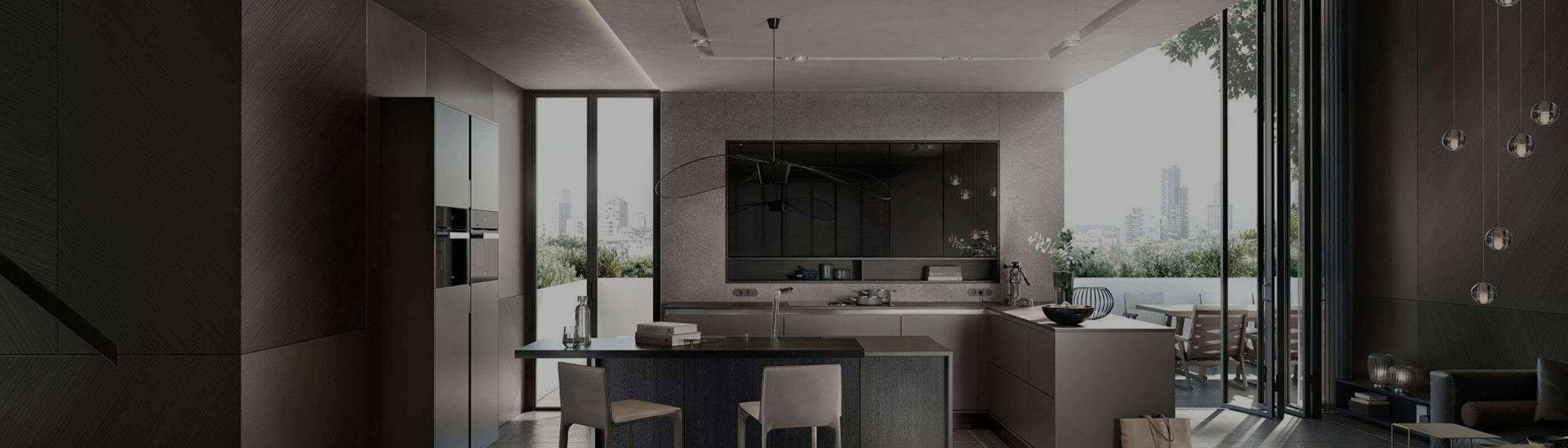 Dark Designer kitchen